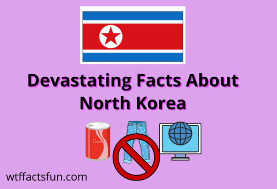 Devastating facts about north korea
