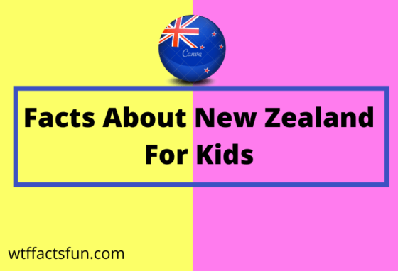 facts about New Zealand for kids